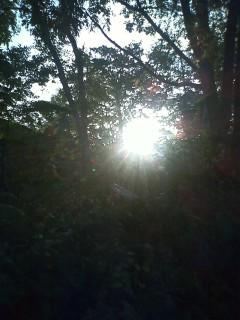 川湯の朝日…